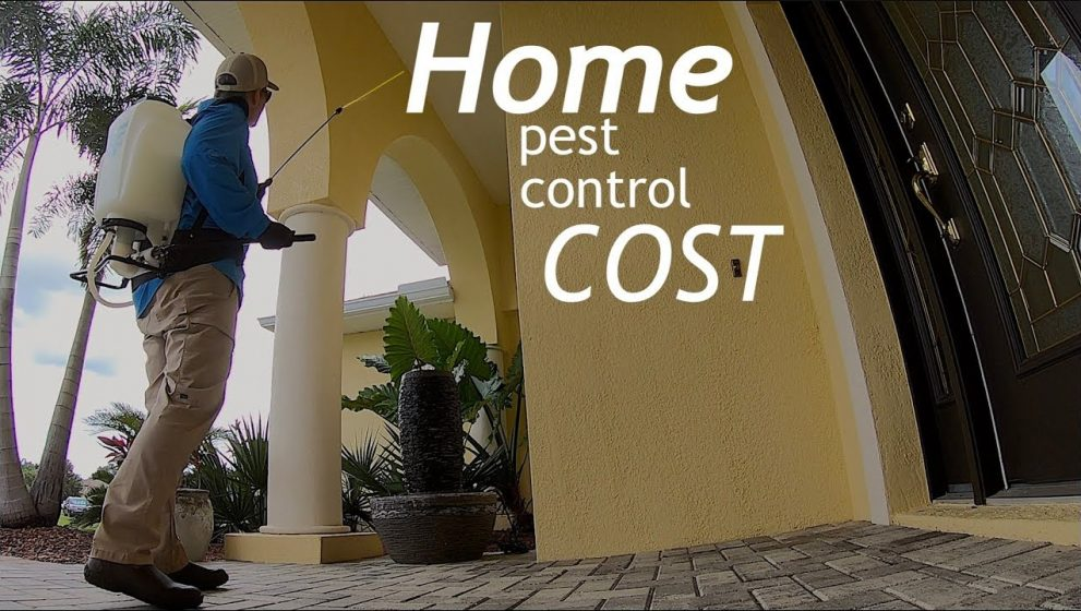 Battling Pests?  This Advice Will Help You Win The War!