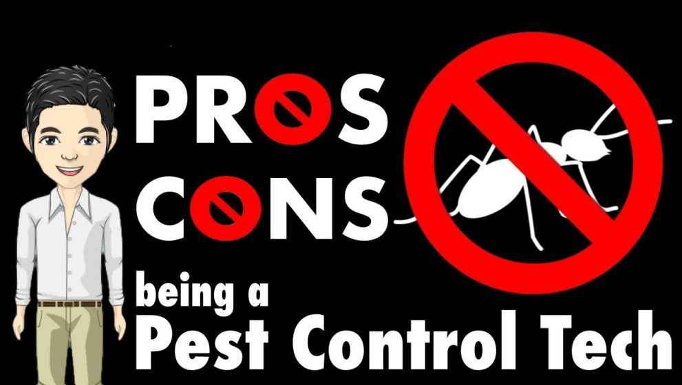 Learn All About Pest Control In This Article